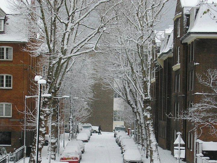 Navarre Street